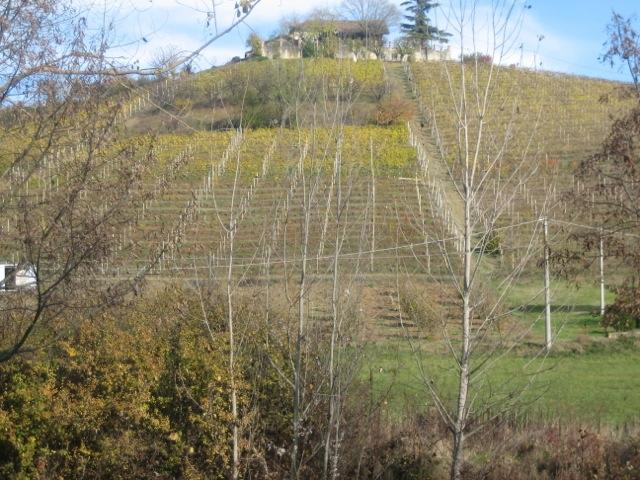 larmangia-producer-pic-00.l'Armangia estate in Asti