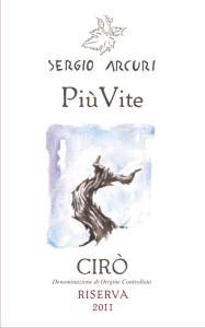 Sergio Arcuri Piu vite Front label JPEG